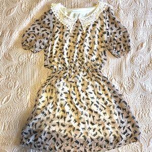 Dresses & Skirts - Crazy 4 Cats 🖤 Dress